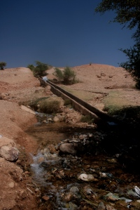 A (dirty) water source near Jericho